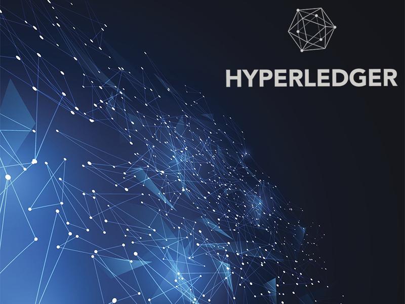 Консорциум Hyperledger разработал платформу для корпоративного блокчейна