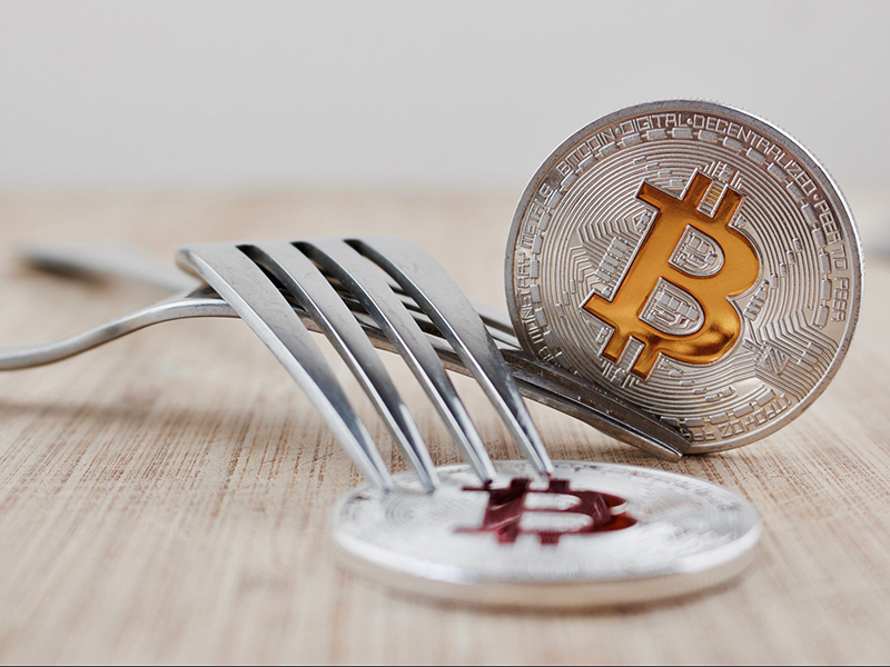 Waiting for double fork: tips for bitcoin owners