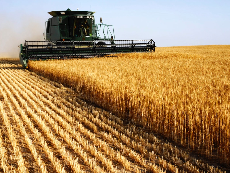 Wheat from Russia shipped to Turkey for bitcoins